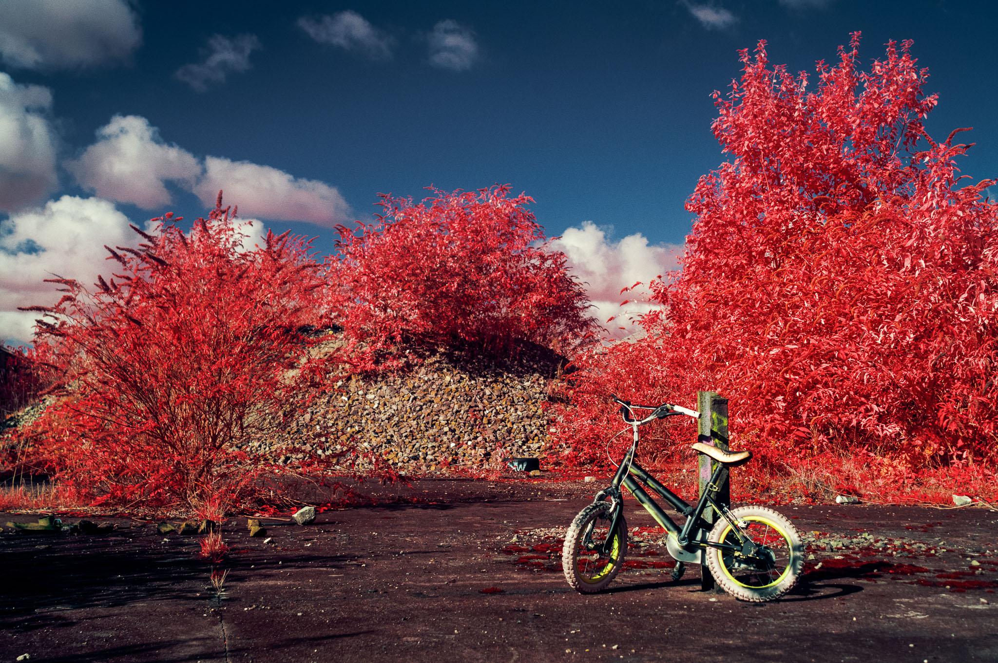 Kodak EIR Colour Infrared, Edgelands, Wasteland, Out of sight,  Bike
