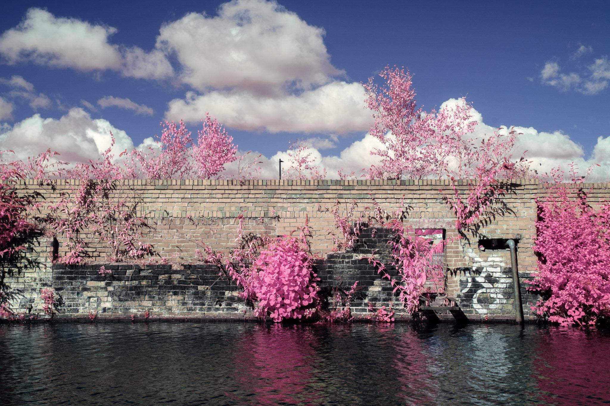 Kodak EIR Colour Infrared, Edgelands, Wasteland, Out of sight,  Canal ©Jonny Sutton