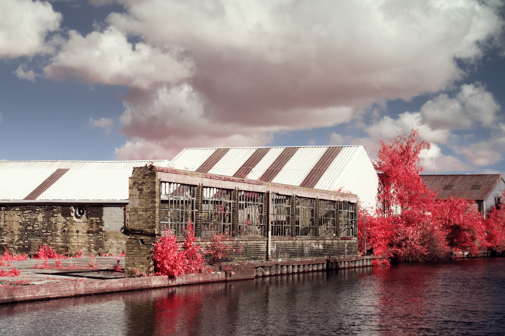 Kodak EIR Colour Infrared, Edgelands, Wasteland, Out of sight,  Canal 2 ©Jonny Sutton