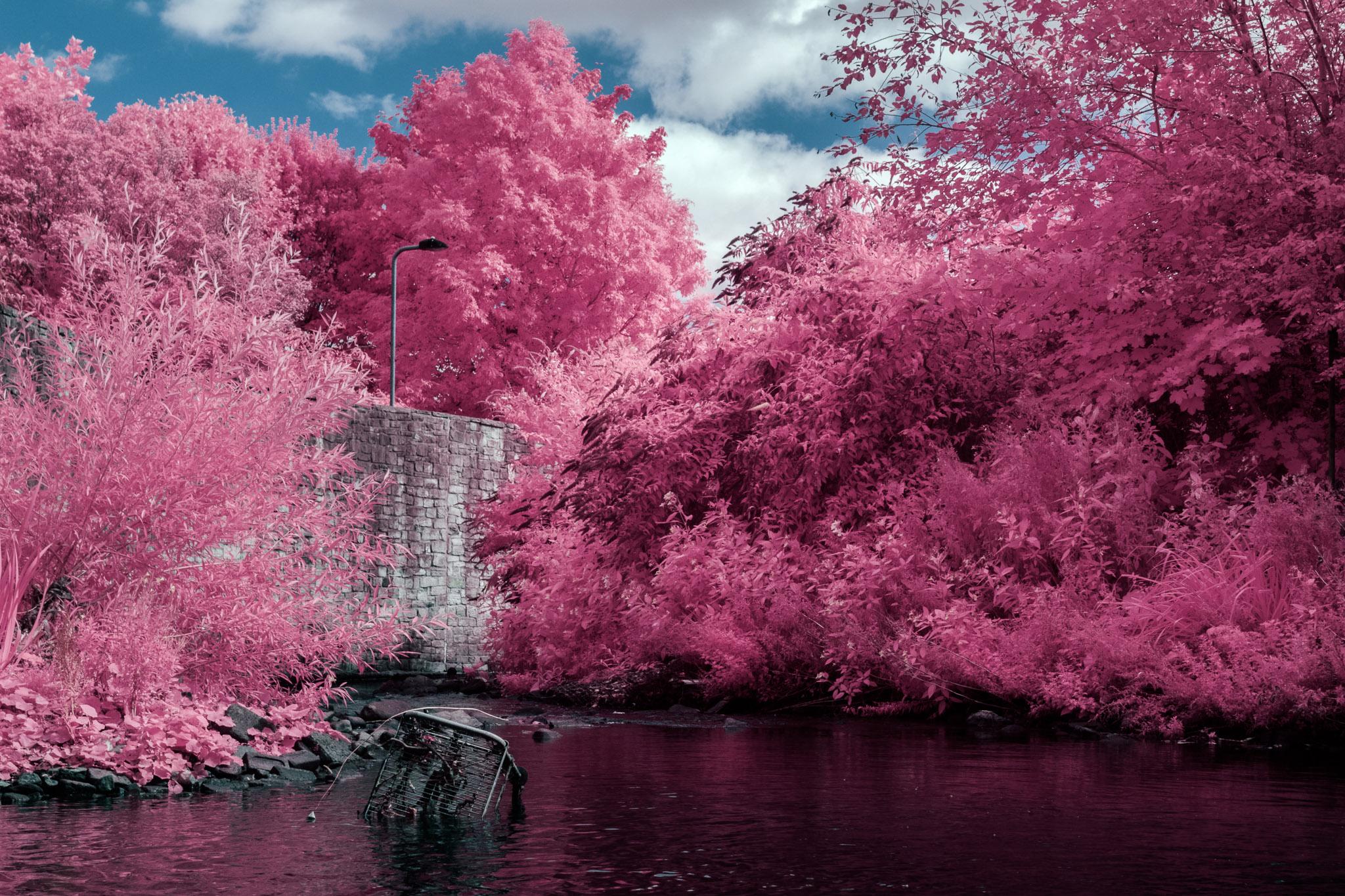Kodak EIR Colour Infrared, Edgelands, Wasteland, Out of sight, Trolley, River ©Jonny Sutton