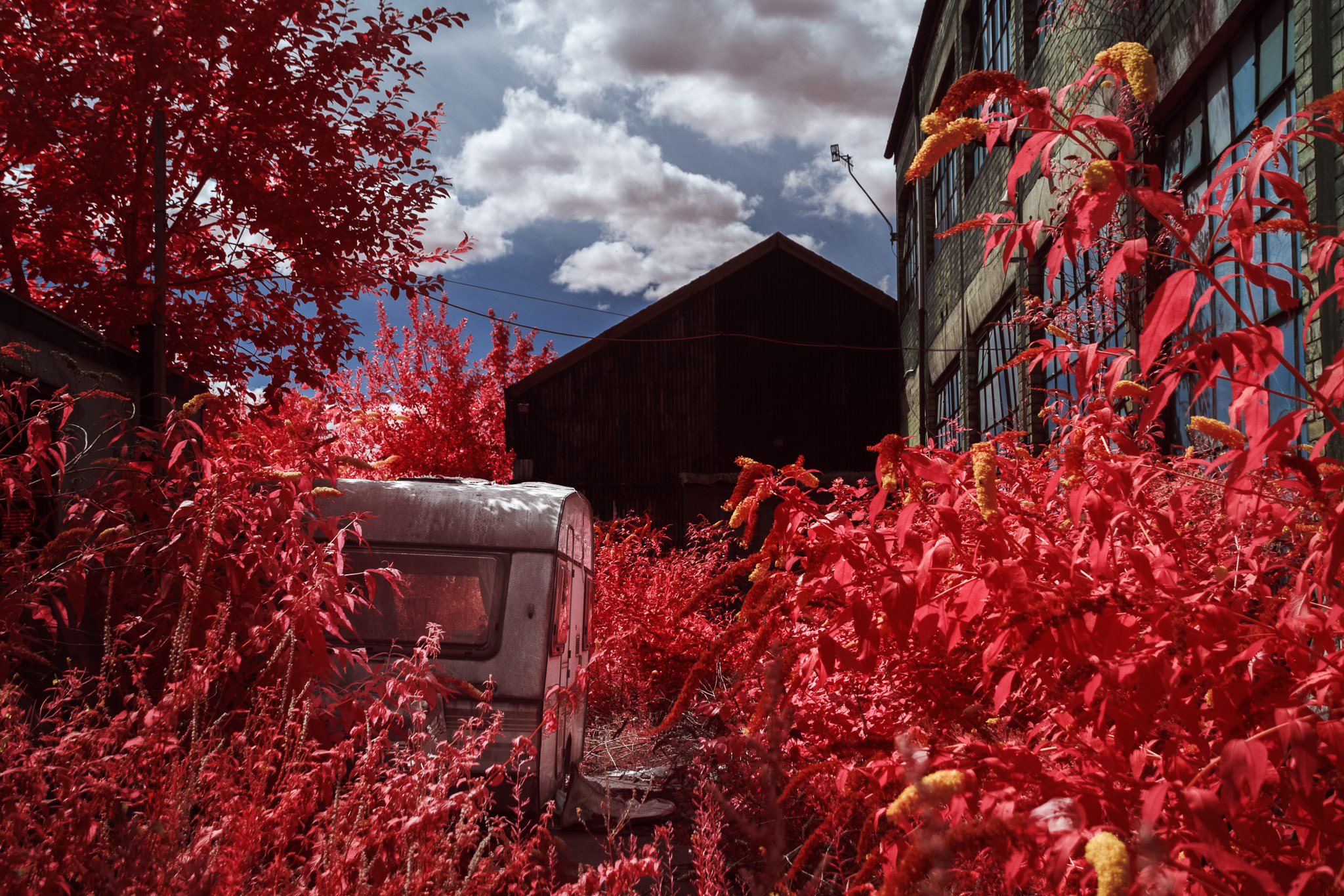 Kodak EIR Colour Infrared, Edgelands, Wasteland, Out of sight, Caravan ©Jonny Sutton
