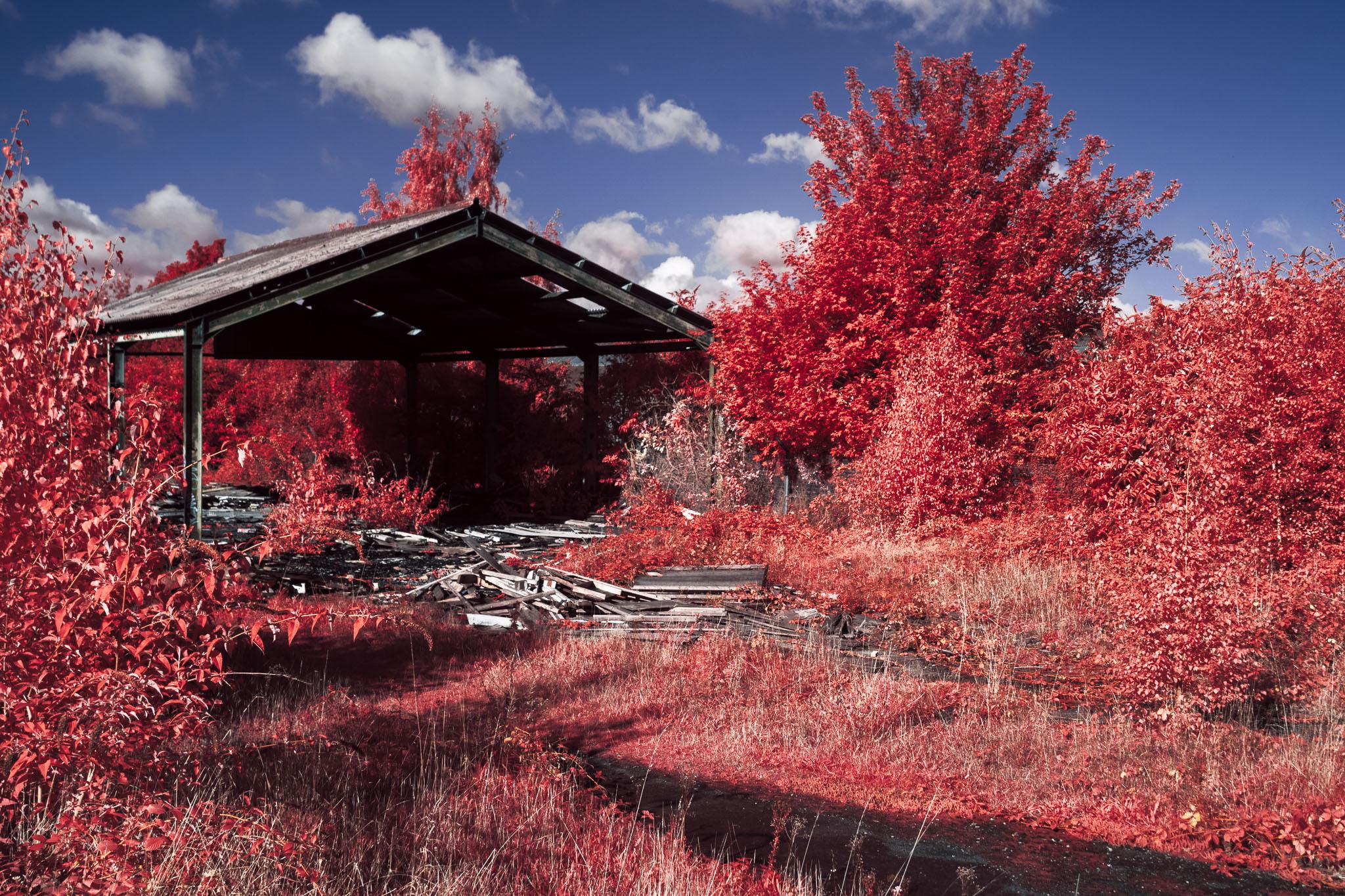 Kodak EIR Colour Infrared, Edgelands, Wasteland, Out of sight, Tram Depot, Warehouse ©Jonny Sutton