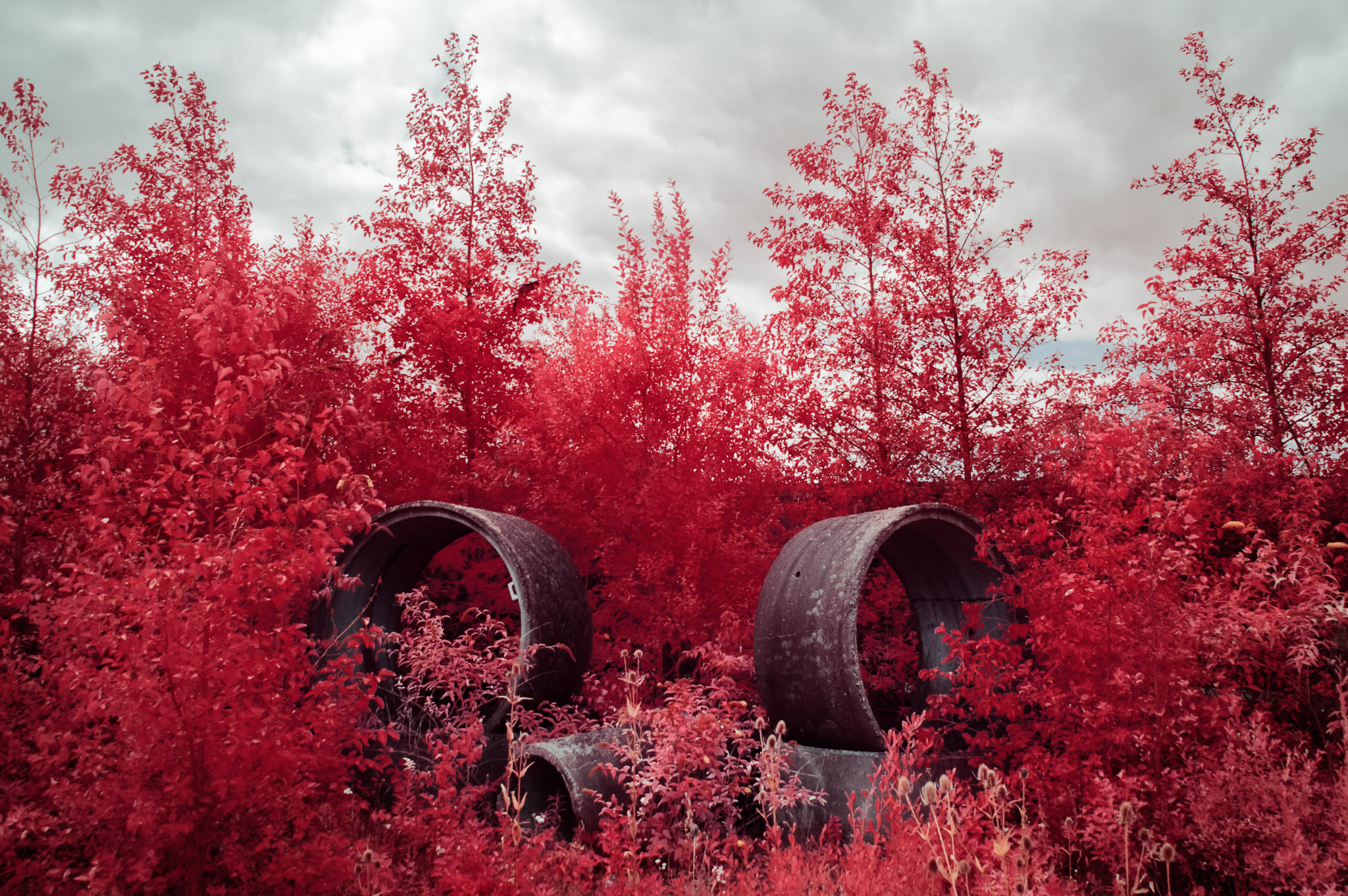 Kodak EIR Colour Infrared, Edgelands, Wasteland, Sewer Pipe ©Jonny Sutton