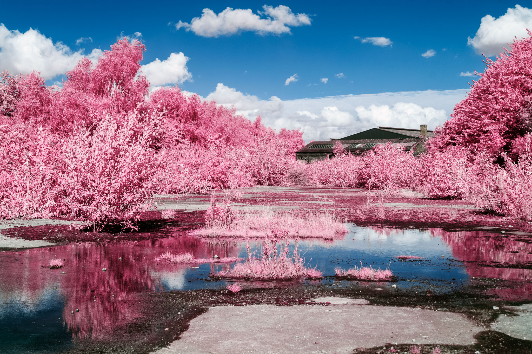 Kodak EIR Colour Infrared, Edgelands, Wasteland, Warehouse, Water ©Jonny Sutton