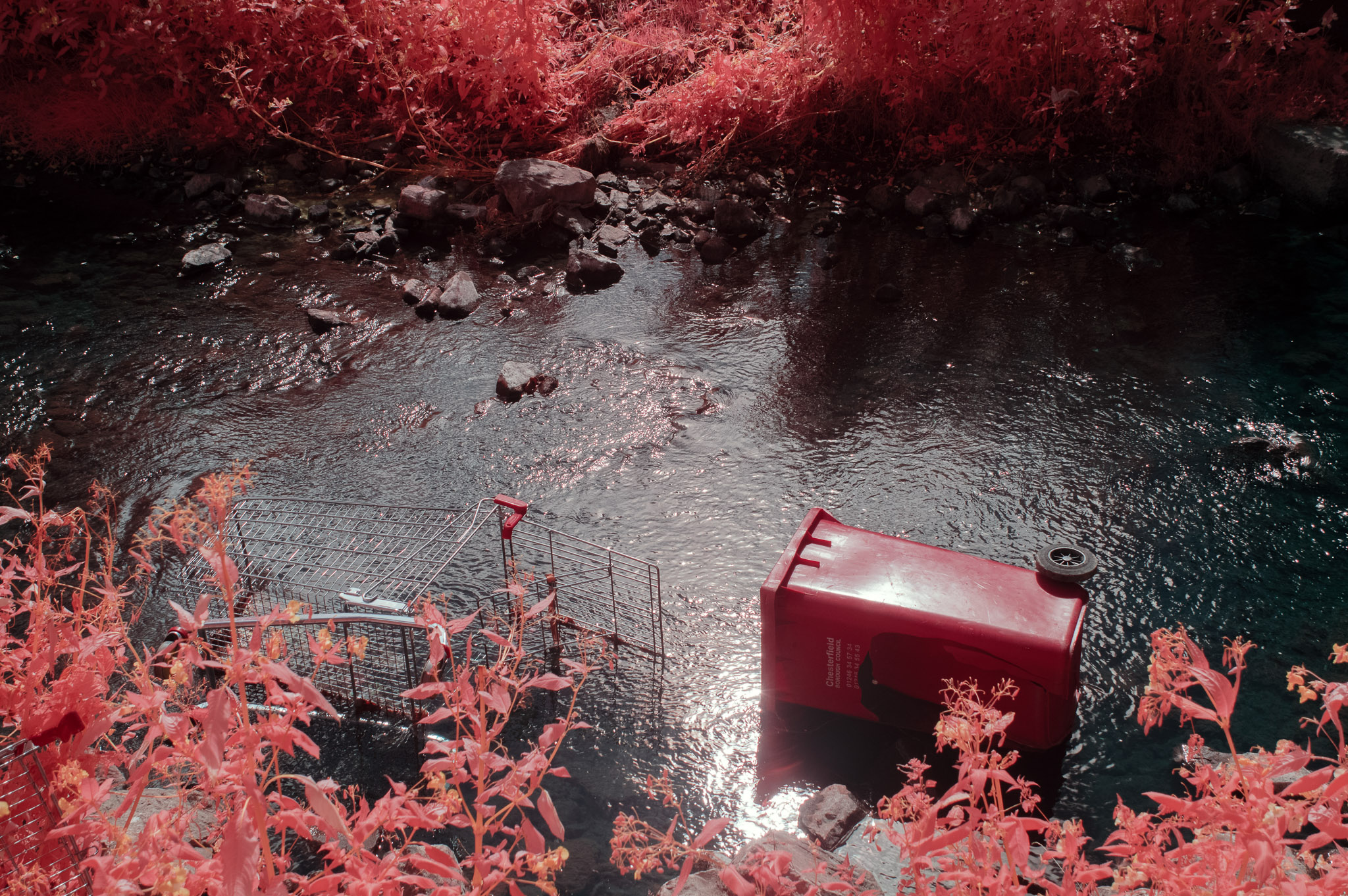 Kodak EIR Colour Infrared, Edgelands, Wasteland, Out of sight, Bin, River ©Jonny Sutton