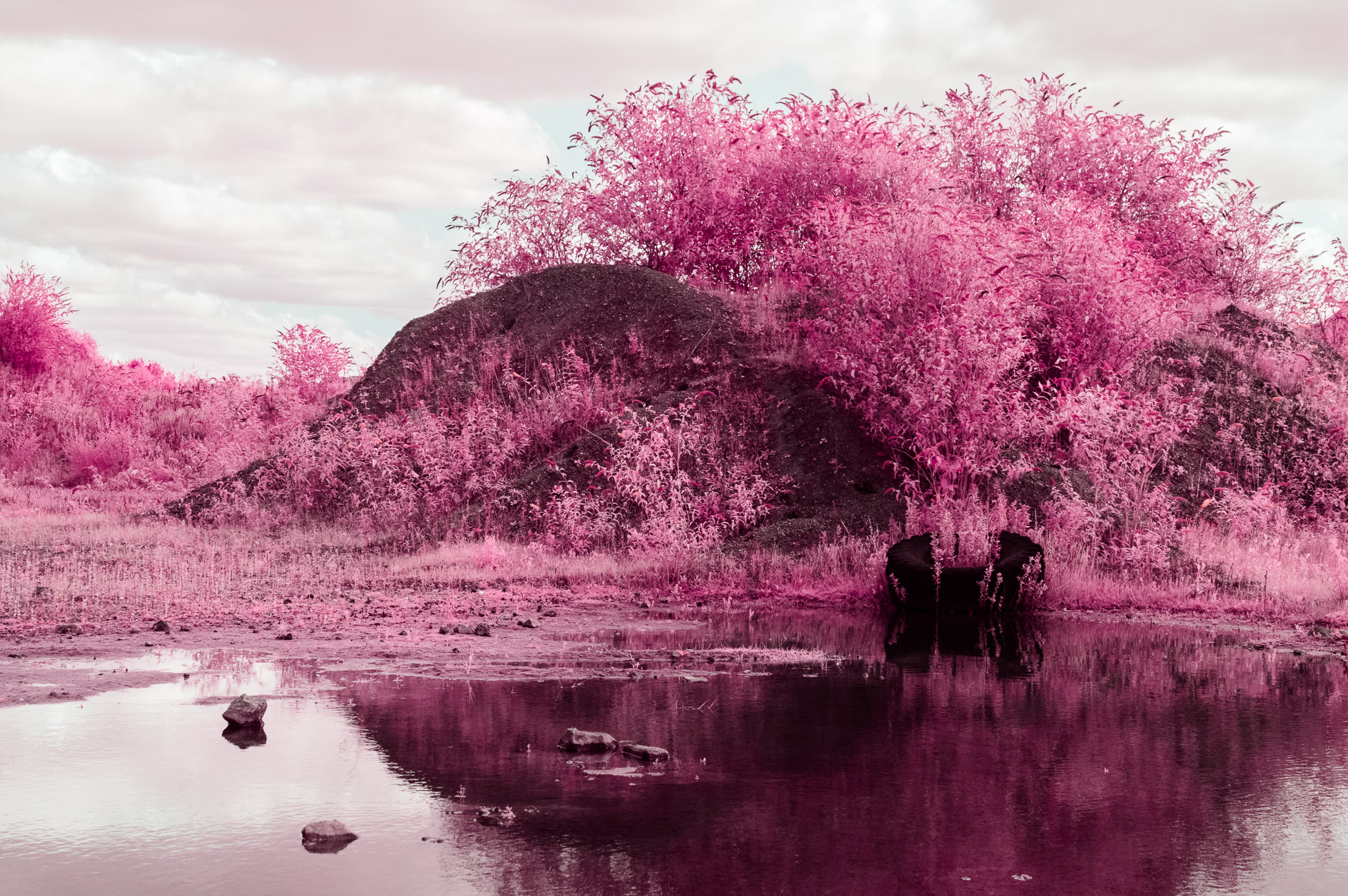 Kodak EIR Colour Infrared, Edgelands, Wasteland, Tyre, Puddle ©Jonny Sutton